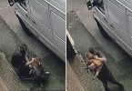 Picture by Guzelian A 35-year-old man has been arrested in Oldham after footage of him beating his dog went viral after it was posted on Facebook. Pictured: Screenshot from the video showing the man beating the dog. WORDS BY GUZELIAN Shocking footage of a man assaulting a dog in the middle of a street in Greater Manchester has gone viral after being viewed over 2.5m times on Facebook. The video, which appears to have been recorded yesterday (1 MAY), shows a man walking his dog in Oldham when suddenly the dog stops. The man appears to pull the dog, who is believed to be called Narla, to get it to move along before stopping to crouch alongside it. Suddenly, the man starts to throw vicious punches and connects with the dogs face.  He then grabs the dog and picks it up before throwing it to the ground, before continuing to punch the dog.